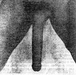 Фото из порнофильма длинный техасский рог