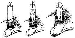 zakachka-vazelina-v-chlen-tolstaya-golaya-na-krovati