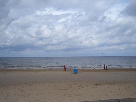 Пляж вытащил всадил — photo 6