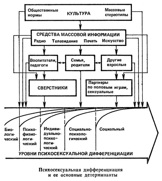 issledovanie-strukturi-lichnosti-v-seksologii