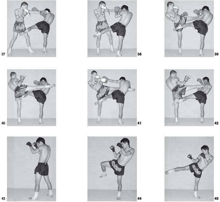 Учебник Техники Бокса